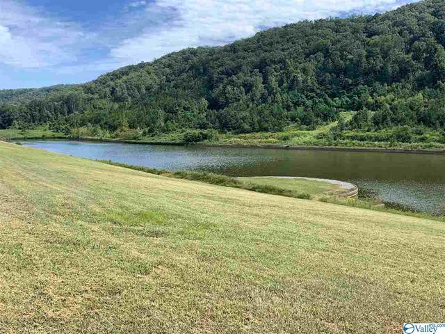 9 North Harbor Drive, Guntersville, AL 35976 (MLS #1153874) :: MarMac Real Estate