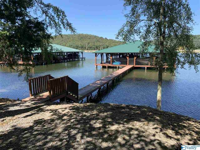 18 Mitchell Hollow Road, Grant, AL 35747 (MLS #1153934) :: MarMac Real Estate