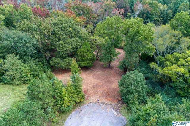 27107 Red Acres Lane, Athens, AL 35613 (MLS #1153938) :: LocAL Realty