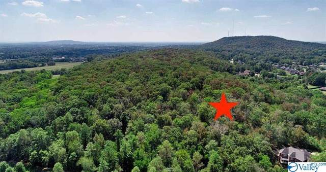 0 Jeff View Court, Harvest, AL 35749 (MLS #1153944) :: Rebecca Lowrey Group