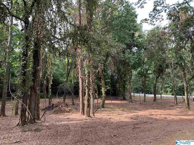 3858 County Road 91, Rogersville, AL 35652 (MLS #1153963) :: MarMac Real Estate