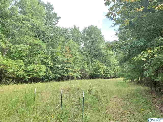 5531 County Road 106, Mentone, AL 35984 (MLS #1153983) :: Amanda Howard Sotheby's International Realty