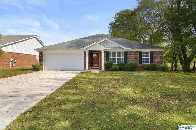 196 Bayside Lane, Toney, AL 35773 (MLS #1154045) :: MarMac Real Estate