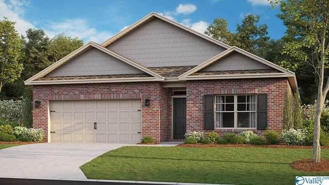 229 Ivyleaf Drive, Madison, AL 35757 (MLS #1154127) :: MarMac Real Estate