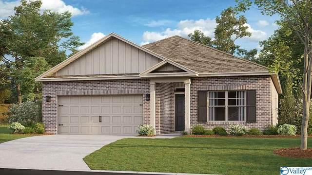 237 Ivyleaf Drive, Madison, AL 35757 (MLS #1154132) :: MarMac Real Estate