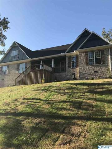 83 Buckskin Drive, Guntersville, AL 35976 (MLS #1154356) :: RE/MAX Unlimited