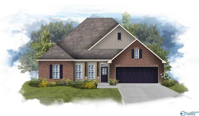 125 Rita Ann Way, Meridianville, AL 35759 (MLS #1154476) :: Legend Realty