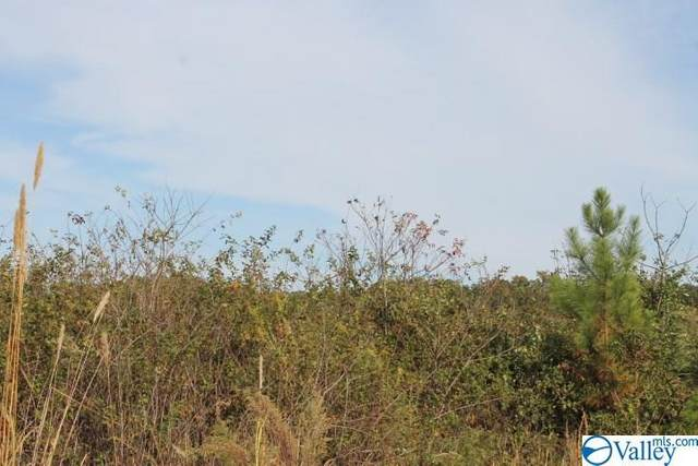 Lot 1 Hillside Drive, Fort Payne, AL 35967 (MLS #1154617) :: Southern Shade Realty