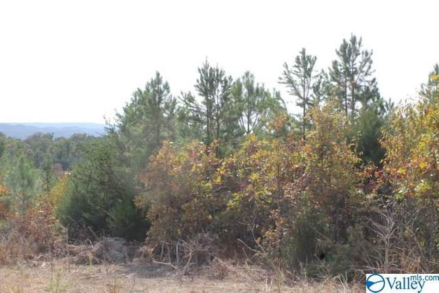 Lot 16 North Hillside Drive, Fort Payne, AL 35967 (MLS #1154619) :: LocAL Realty