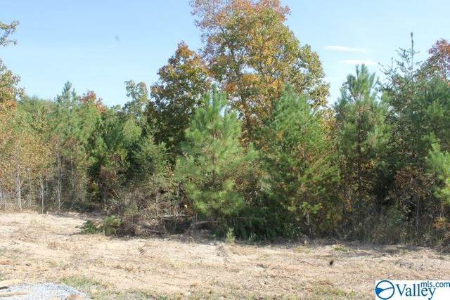 Lot 11 Hillside Drive, Fort Payne, AL 35967 (MLS #1154620) :: Southern Shade Realty