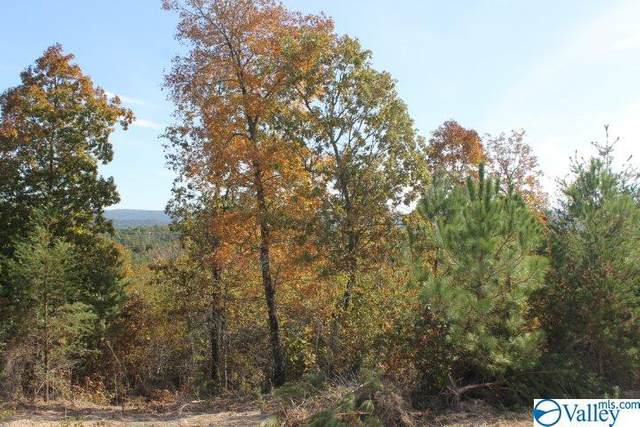 Lot 5 Hillside Drive, Fort Payne, AL 35967 (MLS #1154628) :: Southern Shade Realty