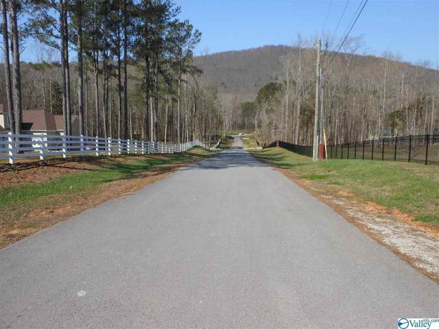 2195 Dug Hill Road, Brownsboro, AL 35741 (MLS #1154707) :: RE/MAX Distinctive   Lowrey Team