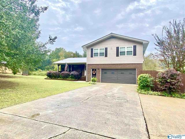 2610 Langdale Street, Hokes Bluff, AL 35903 (MLS #1154726) :: Coldwell Banker of the Valley