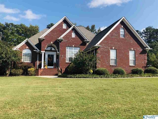1311 Dan Avenue, Albertville, AL 35950 (MLS #1154941) :: LocAL Realty