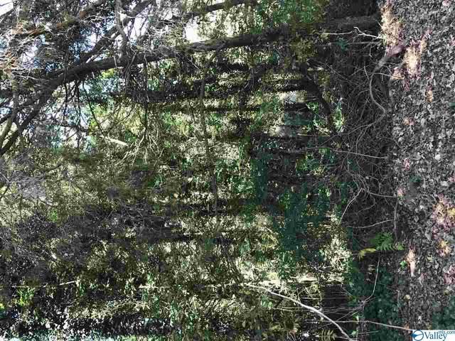 00 Falcon Road, Madison, AL 35758 (MLS #1155125) :: MarMac Real Estate
