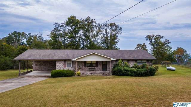 43 County Road 223, Dutton, AL 35744 (MLS #1155218) :: MarMac Real Estate