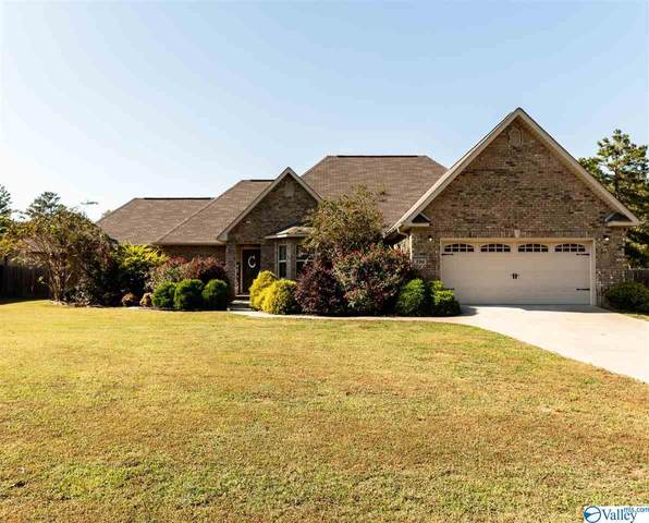 390 Still Meadow Road, Somerville, AL 35670 (MLS #1155329) :: RE/MAX Distinctive | Lowrey Team