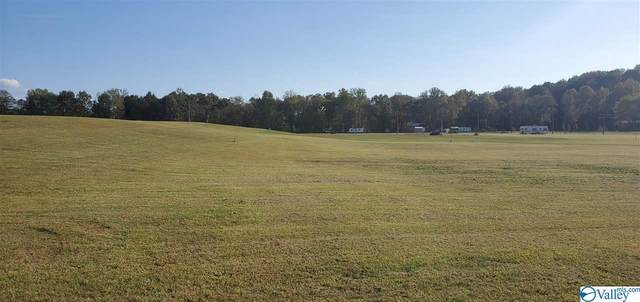 48 County Road 1042, Centre, AL 35960 (MLS #1155398) :: Coldwell Banker of the Valley