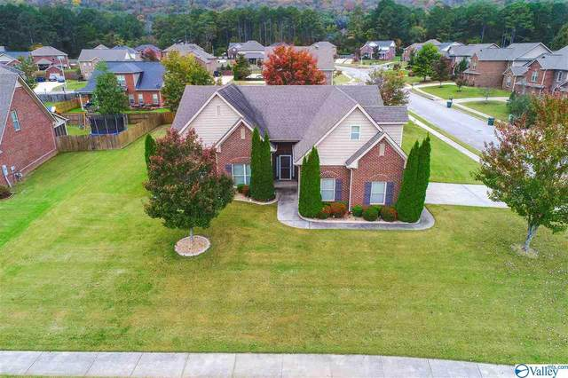 4811 Valley Drive, Owens Cross Roads, AL 35763 (MLS #1155413) :: Rebecca Lowrey Group