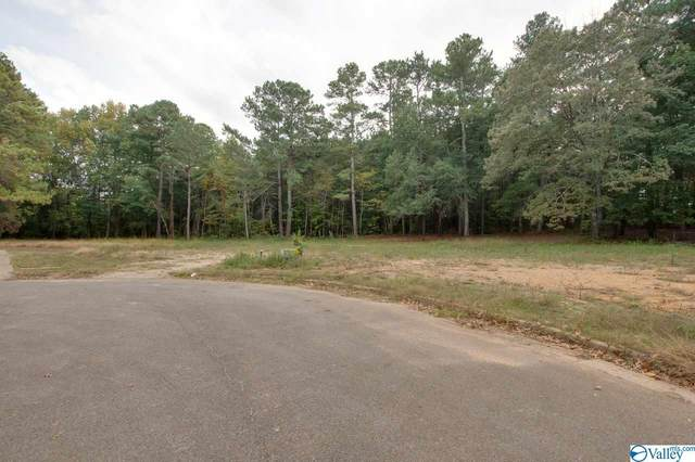 202 Sherry Lynn Place, Harvest, AL 35749 (MLS #1155459) :: Southern Shade Realty