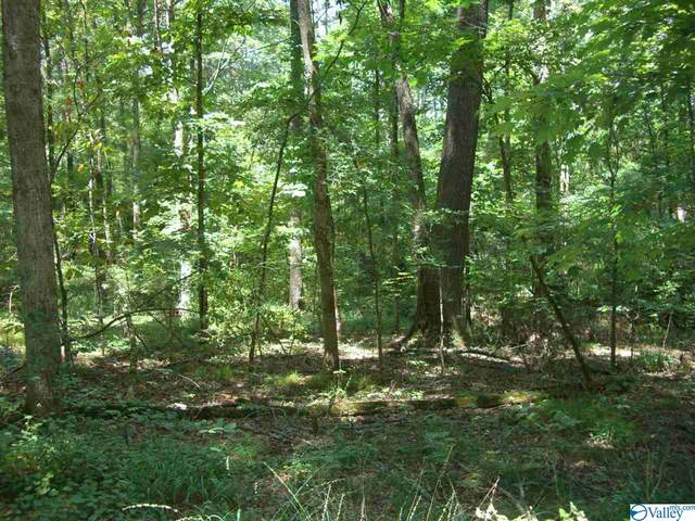 County Road 21, Scottsboro, AL 35768 (MLS #1155470) :: MarMac Real Estate