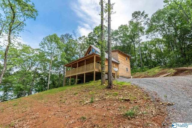1233 Lakeshore Drive, Langston, AL 35765 (MLS #1155474) :: MarMac Real Estate