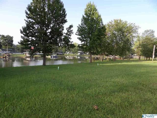 74 Three Mile Resort, Centre, AL 35960 (MLS #1155514) :: MarMac Real Estate