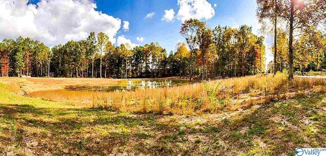 6608 County Road 107, Scottsboro, AL 35768 (MLS #1155591) :: Coldwell Banker of the Valley