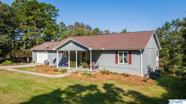 3138 County Road 99, Gaylesville, AL 35973 (MLS #1155673) :: MarMac Real Estate