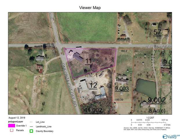 2185 Oneonta Cut-Off Road, Albertville, AL 35950 (MLS #1155805) :: MarMac Real Estate