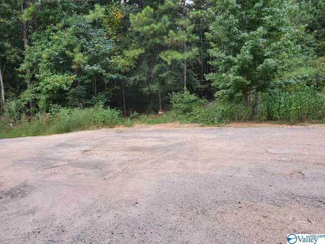 0 Garrett Road #10, Blountsville, AL 35031 (MLS #1155937) :: MarMac Real Estate