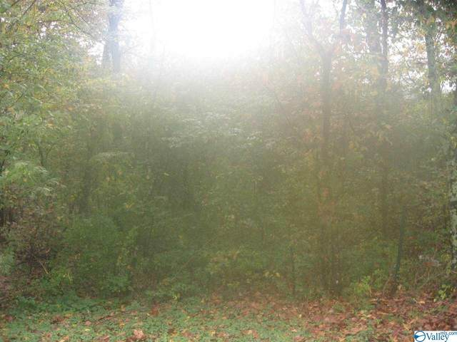3 acres County Road 183, Woodville, AL 35776 (MLS #1155988) :: Rebecca Lowrey Group