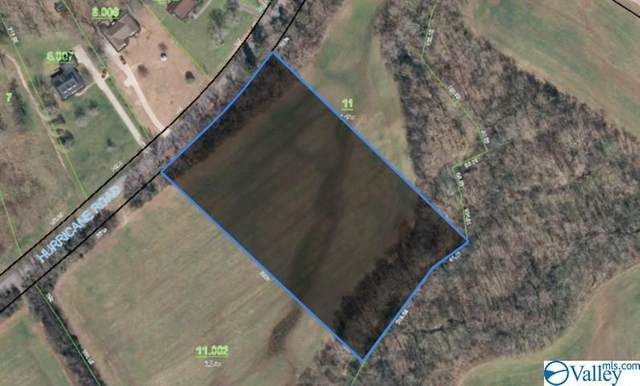 0 Hurricane Road, New Market, AL 35761 (MLS #1156099) :: The Pugh Group RE/MAX Alliance