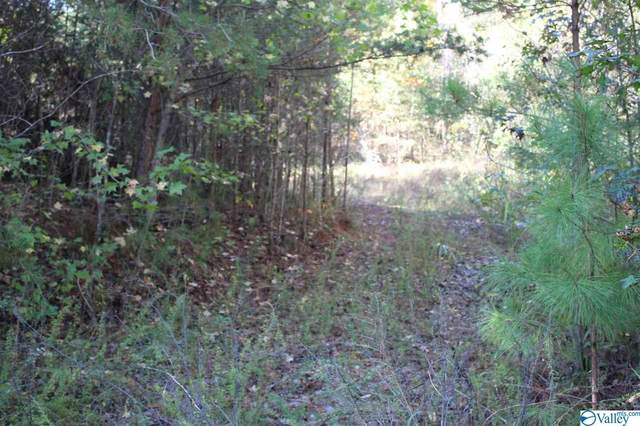00 County Road 494, Fort Payne, AL 35968 (MLS #1156116) :: RE/MAX Distinctive | Lowrey Team