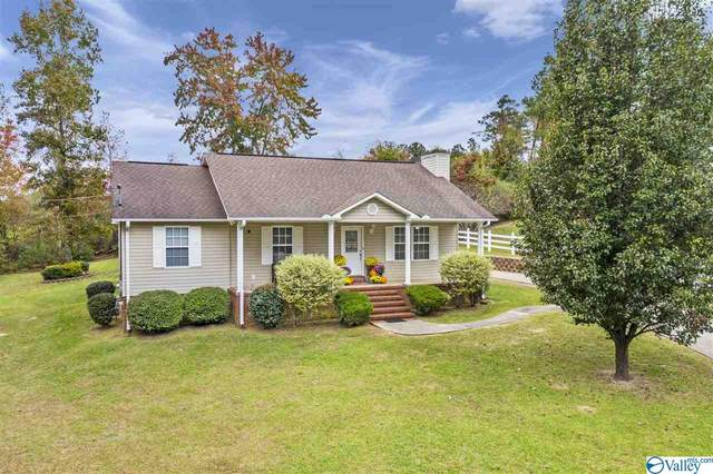 2550 Country Road, Southside, AL 35907 (MLS #1156388) :: RE/MAX Unlimited