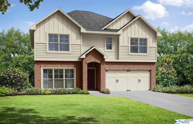 100 SW Pointe Haven Court, Huntsville, AL 35824 (MLS #1156453) :: RE/MAX Distinctive | Lowrey Team