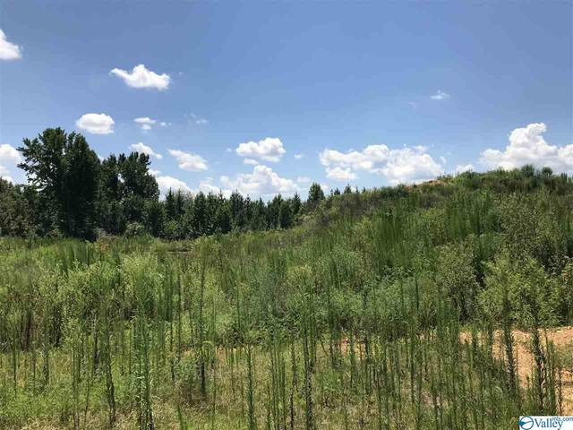 Smith Vasser Road, Harvest, AL 35749 (MLS #1156672) :: LocAL Realty