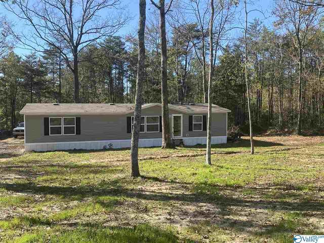 287 County Road 431, Bryant, AL 35958 (MLS #1156755) :: Coldwell Banker of the Valley