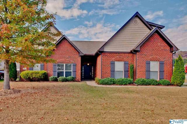 4807 Cove Valley Drive, Owens Cross Roads, AL 35763 (MLS #1156926) :: LocAL Realty