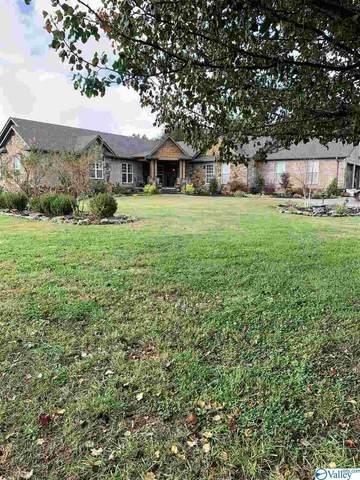7193 Wyeth Mountain Road, Guntersville, AL 35976 (MLS #1156965) :: MarMac Real Estate