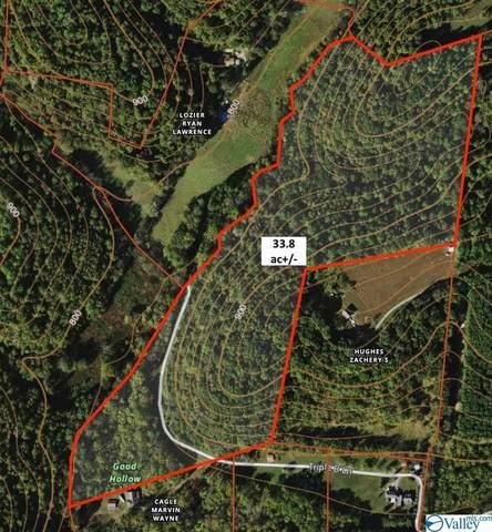 57 Triple B Lane, Taft, TN 38488 (MLS #1157145) :: Rebecca Lowrey Group