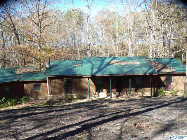 461 County Road 1486, Cullman, AL 35058 (MLS #1157210) :: MarMac Real Estate