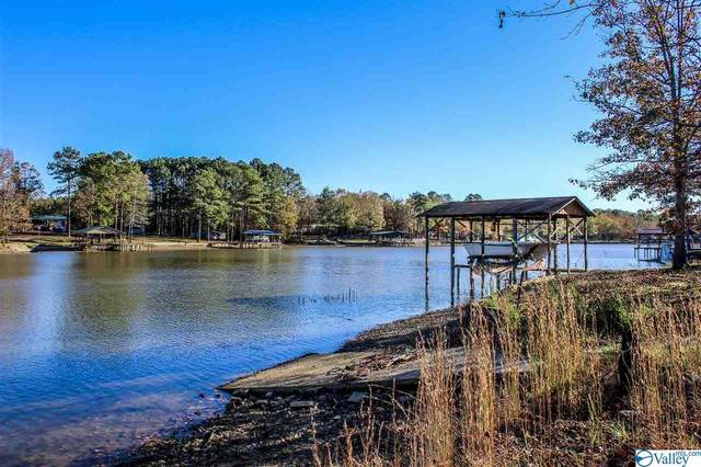 Lot 22 County Road 667, Cedar Bluff, AL 35959 (MLS #1157306) :: LocAL Realty