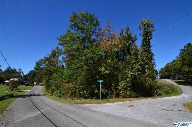 18 Broughton Springs Road, Southside, AL 35907 (MLS #1157381) :: Green Real Estate