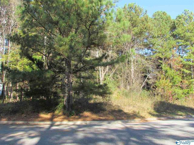 2902 Wood Hollow Trail, Decatur, AL 35603 (MLS #1157504) :: Rebecca Lowrey Group