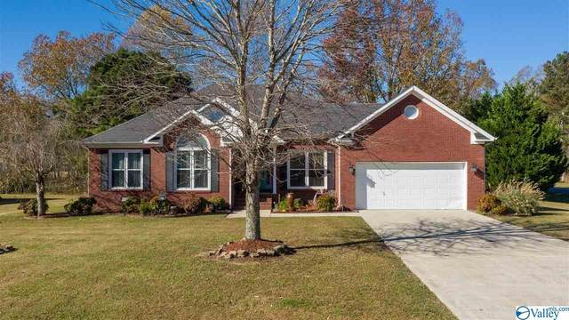 100 Duck Spring Road, Toney, AL 35773 (MLS #1157521) :: Coldwell Banker of the Valley