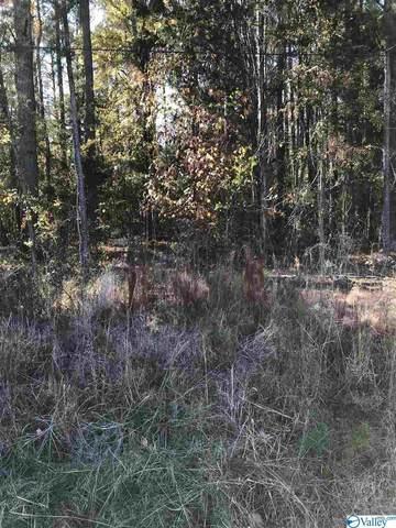 12004 Memorial Parkway South, Huntsville, AL 35803 (MLS #1157528) :: RE/MAX Unlimited