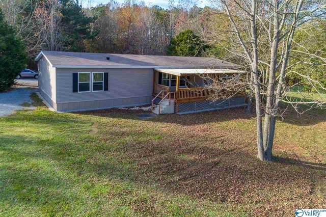 3443 County Road 221, Moulton, AL 35650 (MLS #1770003) :: MarMac Real Estate