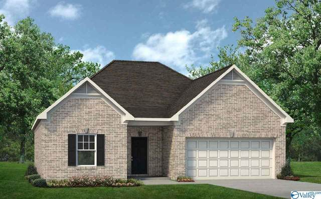 248 Maggie Mance Lane, Harvest, AL 35749 (MLS #1770065) :: Revolved Realty Madison