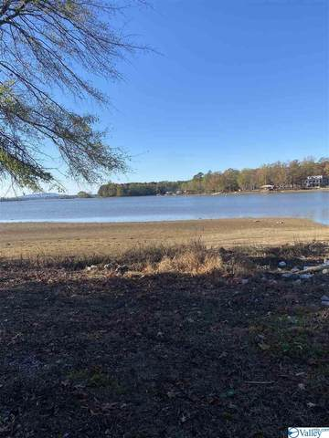 Lot 58 Hidden Point Cove, Cedar Bluff, AL 35959 (MLS #1770075) :: LocAL Realty